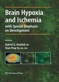 brain-hypoxia